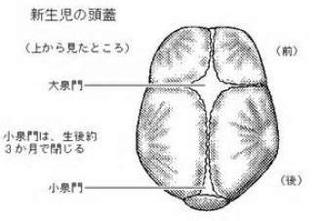 15A82DCB-9E3A-438D-AFB1-C751994F4B03.jpg